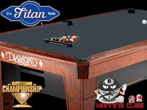 Championship Titan Cloth - Titanium